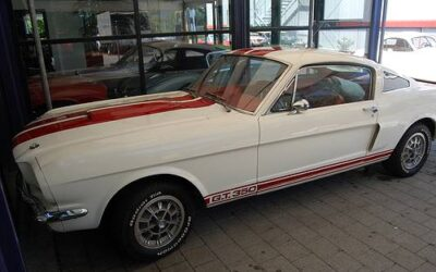 Ford Mustang GT 350 Clone – 1965